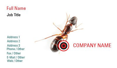 Ant Pest Control Business Card Template
